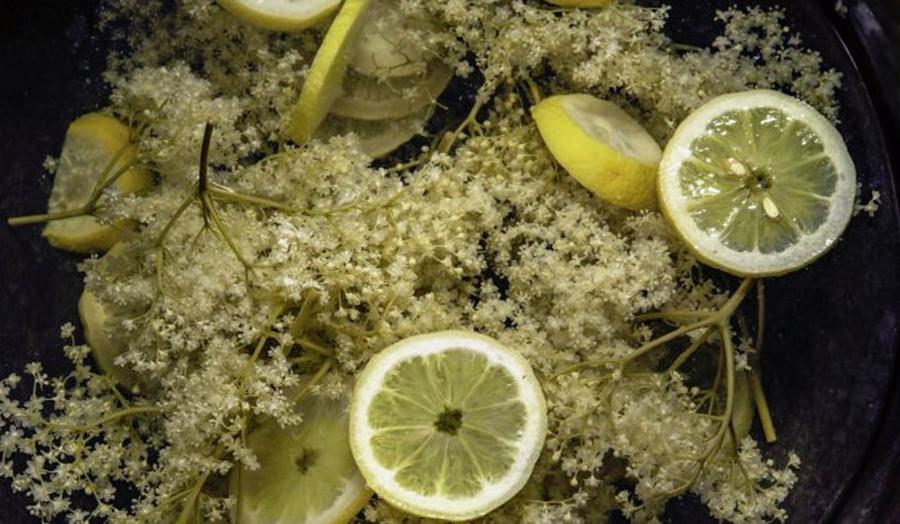 Ceaiul care ameliorează simptomele gripei