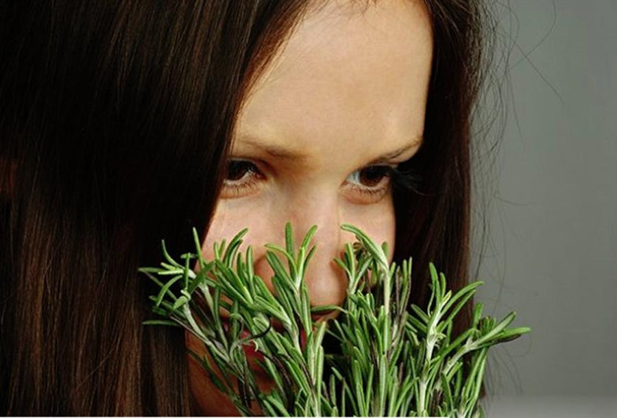 Planta puternica, bună pentru creier, inimă, vase, piele, păr și siluetă. Te scăpa și de stres